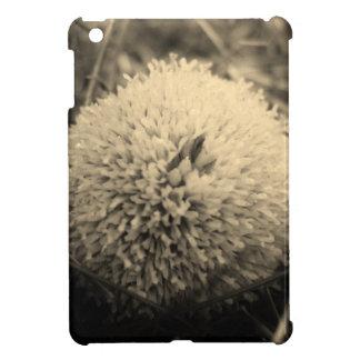 0 CASE FOR THE iPad MINI