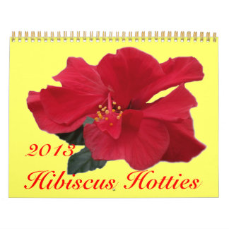 0 hibiscos Hotties 2013 Calendario