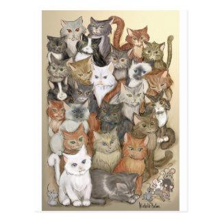 1000 cats postcard