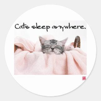 10010.Cats sleep anywhere Classic Round Sticker