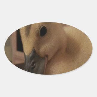 1002867_10201288427044878_124397024_n.jpg oval sticker