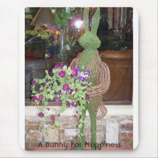 100_0297, un conejito para la felicidad tapetes de raton
