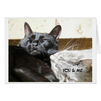 100_0312,                                 You & Me Greeting Card