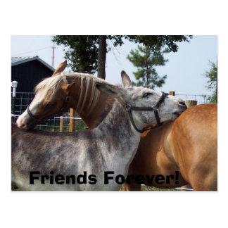 100_0424, Friends Forever! Postcard