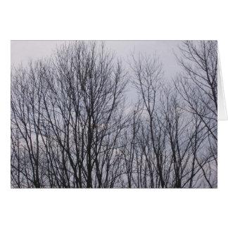 100_0435 CARD