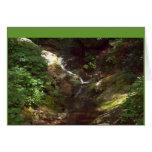100_0499 Note card--Mountain stream