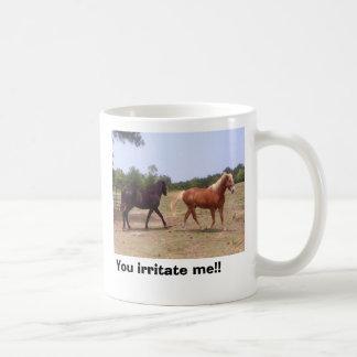 100_0535, You irritate me!! Classic White Coffee Mug