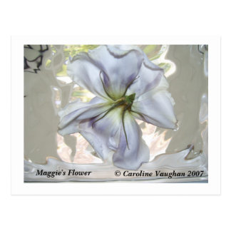 100_0709 la flor de Maggie Caroline Vaughan 2007 Postal