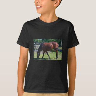 100_0830-1 Child's horse Tee Shirt