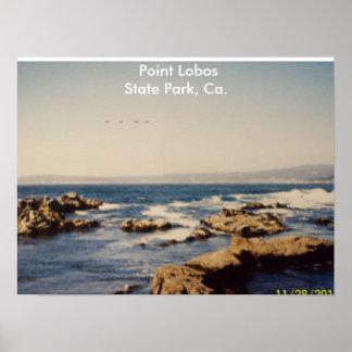 100_1066Ca.PtLoBos,  Point LobosState Park, Ca. Print