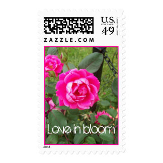 100_1272, Love in bloom Stamps