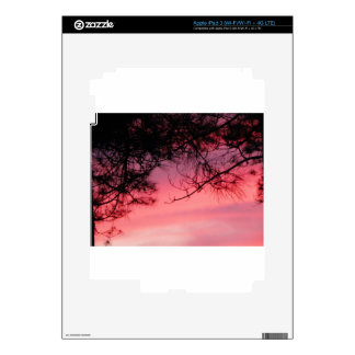 100_1467.JPG DECALS FOR iPad 3