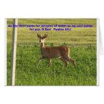 100_3149, As the deer pants for streams of wate... Cards
