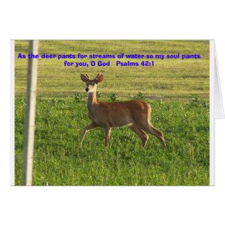 100_3149 como los ciervos jadea para las corrient felicitación