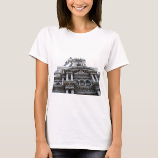 100_3795 T-Shirt
