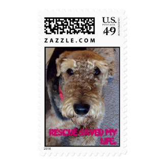 100_4231, Rescue saved my life. Postage Stamp