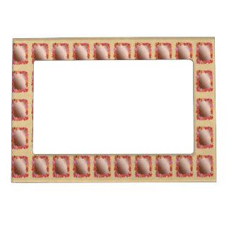 100 Match Decor : Shades Pattern Sparkle Spectrum Photo Frame Magnets