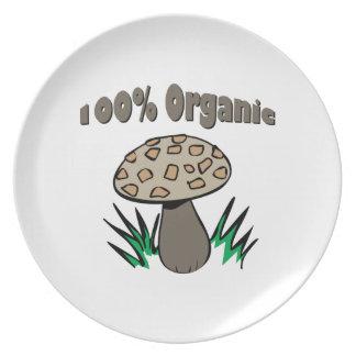 100% Organic Plates