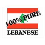 100 Percent LEBANESE Post Card