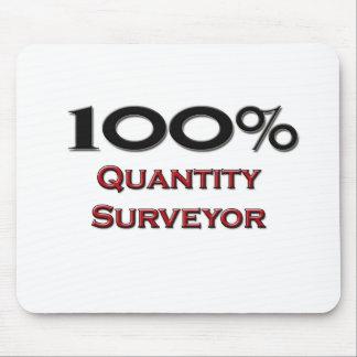 100 Percent Quantity Surveyor Mouse Pad