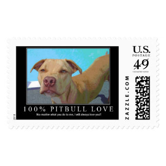 100% pitbull love stamp