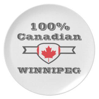 100% Winnipeg Melamine Plate