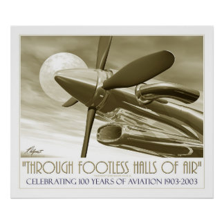 100th Anniversary of Flight Poster