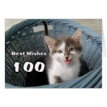 100th Birthday Crazy Kitten Greeting Card