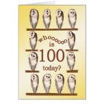 100th birthday, Curious owls card. Greeting Card