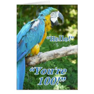 100th Birthday-Parrot humor Card