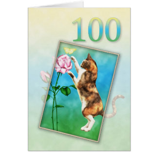 100th Birthday with a playful cat Card