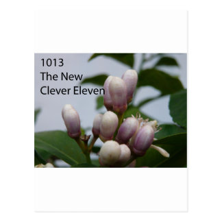 1013 The New Clever Eleven Cover Photo Postcard