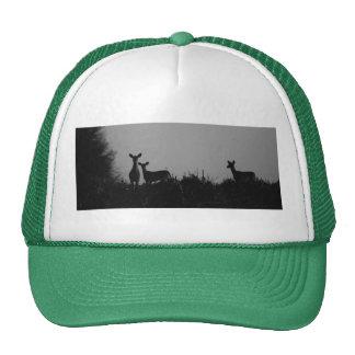 101710-2-AH TRUCKER HAT