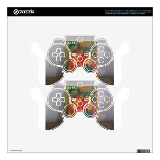 101_1353.JPG SKINS FOR PS3 CONTROLLERS
