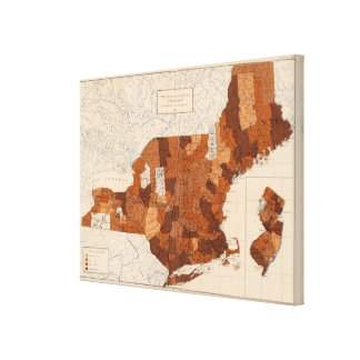 101 consumo NY, NJ, Nueva Inglaterra Lona Envuelta Para Galerías