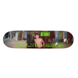 102_0353, austin skating, 102_0325, 102_0329, S... Skateboard Deck