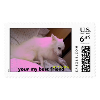 102_0853, your my best friend postage