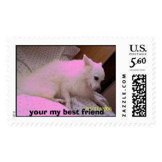 102_0853, your my best friend postage
