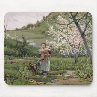 103-0066598/2 Spring Mouse Pad