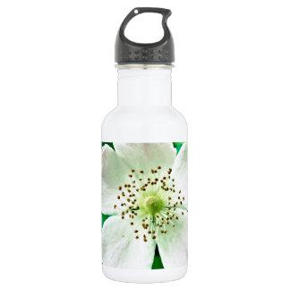 1048 WILD WHITE ROSE PETALS BLOSSOM FLOWER PHOTOGR STAINLESS STEEL WATER BOTTLE
