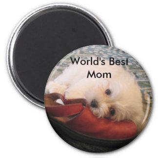 104_0471, World's Best Mom Magnet