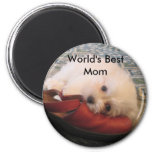 104_0471, World's Best Mom Refrigerator Magnets