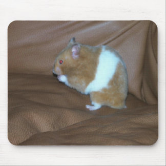 104 - Hamster Mouse Pads