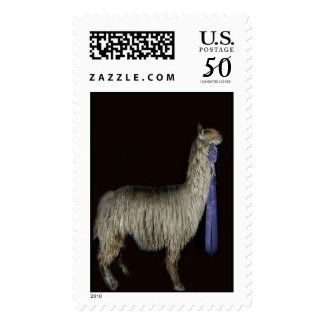10565_17269_award-winning-Patch-again copy Postage