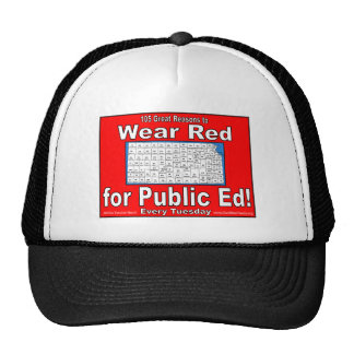105 Great Reasons to Wear Red For Public Ed Trucker Hat