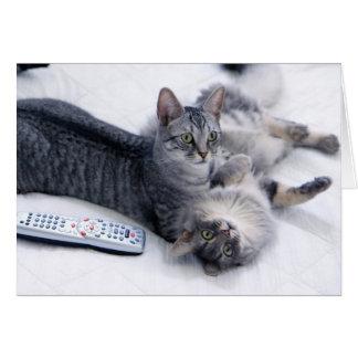 10799 gatos con el telecontrol de la TV Tarjeta De Felicitación