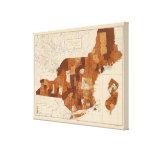 109 fiebre tifoidea NY, NJ, Nueva Inglaterra Impresión En Lienzo Estirada
