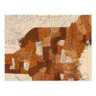 109 Typhoid fever NY, NJ, New England Postcard