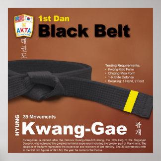 10-12 1st Dan Black Belt Do-jang Poster