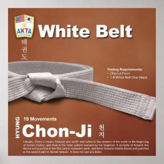 10-1 White Belt Do-jang Poster